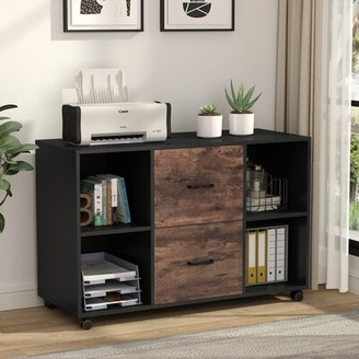 17 Stories Parkdale 2-Drawer Mobile Lateral Filing Cabinet