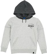 Animal Rufu Hoody