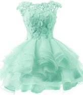 JAEDEN Ball Gown Cocktail Dresses for Wedding Mini Homecoming Dress