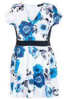 Quiz Curve Cream And Blue Flower Print Panelled Skater Dress