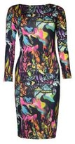 VIP Womens Birds and Feathers Print Long Sleeved Midi Dress (8/10 (uk 12/14), /green/hot pink)