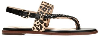 Cole Haan Anica Braided Leopard-Print Calf Hair & Leather Slingback Thong Sandals