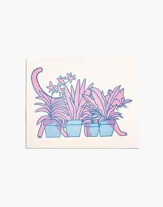 Madewell claire shadomy Cat Plants Print