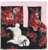 Dolce & Gabbana dog print scarf