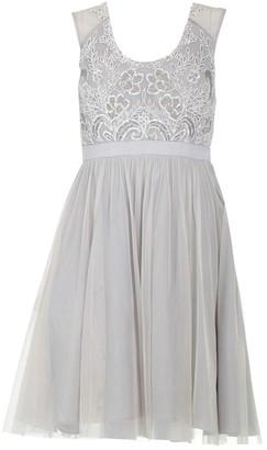 Jenny Packham Silver Cotton - elasthane Dresses