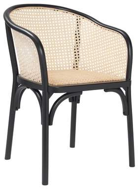 Cara Bayou Breeze Rattan Arm Chair Bayou Breeze Color: Black