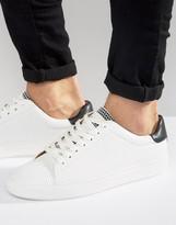 Steve Madden Hester Sneakers