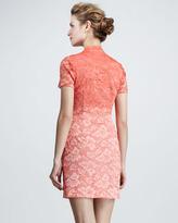 Dolce Vita Ombre Lace Short-Sleeve Dress