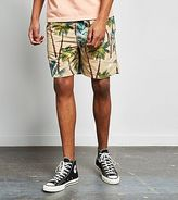 Stussy Palm Shorts