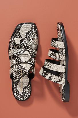 Freda Salvador Donna Sandals By in Black Size 7
