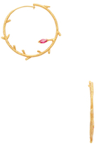 Amrapali Yellow Gold & Ruby Branch Hoop Earrings