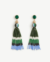 Ann Taylor Variegated Seed Tassel Earrings