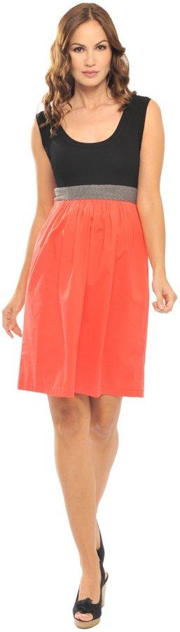 Olian Sleeveless Lycra Dress