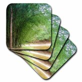 3dRose cst_18605_4 Bamboo Forest Ceramic Tile Coasters, Set of 8