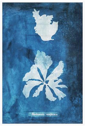 Jonathan Bass Studio Natural Forms Blue 9, Decorative Framed Hand Embellished Canvas