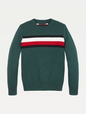 Tommy Hilfiger Essential Signature Tape Pure Cotton Jumper