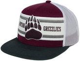Zephyr Montana Grizzlies Superstripe Snapback Cap