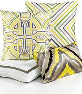 """Trina Turk Ikat Stripe Border 18"""" Square Decorative Pillow"""