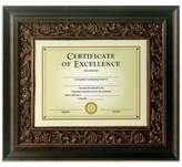Bed Bath & Beyond Tuscan Bronze 13-Inch x 15-Inch Document Frame