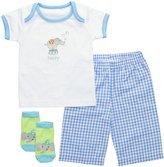 Elegant Baby 3 Piece Fashion Set (Baby) - Blueberry-6 Months