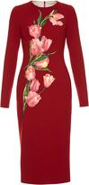 Dolce & Gabbana Tulip-appliqué crepe dress