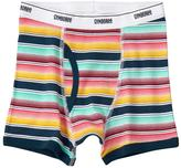 Gymboree Striped Boxer Briefs