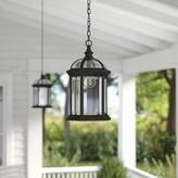 Tucker 1-Light Outdoor Hanging Lantern Charlton Home Fixture Finish: White