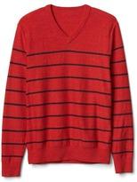 Gap Stripe V-neck sweater