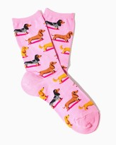 Charming charlie Hotsox Dachshunds Socks