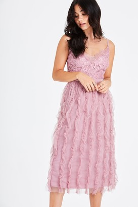 Little Mistress Edna Lace Blush Frill Midi Dress