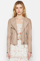 Joie Dory Leather Jacket