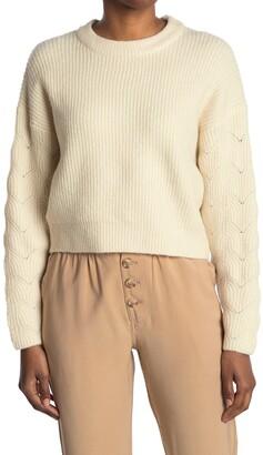 Elodie K Pointelle Sleeve Crew Neck Sweater