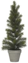 Rogue Classic Christmas Tree Medium 55cm