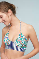 Seea Adria Camburi Swim Bikini Top