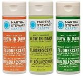 Martha Stewart Acrylic Glow In The Dark Paint Craft Select Your Color