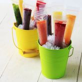 Bed Bath & Beyond Zipzicle® Ice Pop Molds