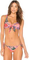 Salinas Bikini Top