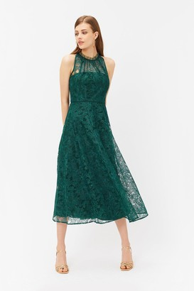 Coast Embroidered High Neck Mesh Dress
