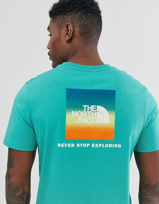 The North Face Red Box t-shirt in green with Joshua Tree effect print