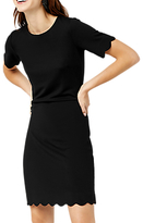 Warehouse Scallop Ponte Dress