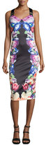 Ted Baker Deony Floral-Print Buckle-Detail Dress, Black