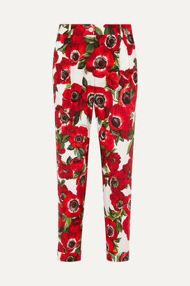 Dolce & Gabbana Floral-print Cotton Tapered Pants - Cream