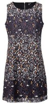 Dorothy Perkins Womens Izabel London Black Ditsy Floral Print Shift Dress, Black