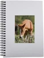 Fotomax Notebook with Föl Haväng Skåne