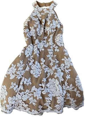 Dress the Population Beige Glitter Dress for Women