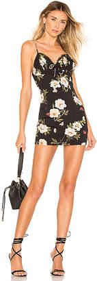 superdown Genelle Lace Cami Dress