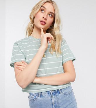 Asos DESIGN Tall boxy crop t-shirt in clean stripe in sage