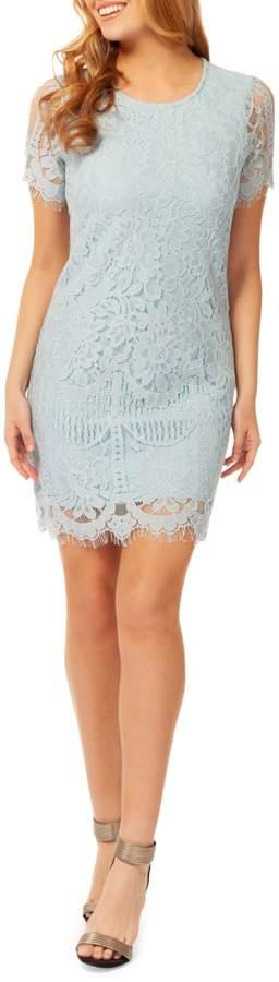 Dex Lace Cotton Blend Sheath Dress