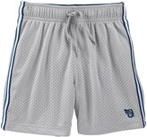 Osh Kosh Knit Shorts (Toddler/Kid) - Silver - 5