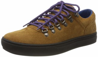 Timberland ADV 2.0 Cupsole Alpine OX A1S mens Ankle Boots